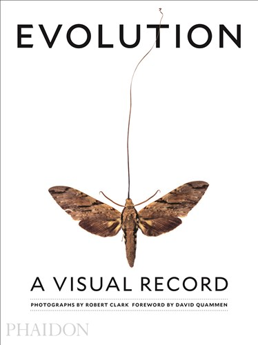 Evolution A Visual Record