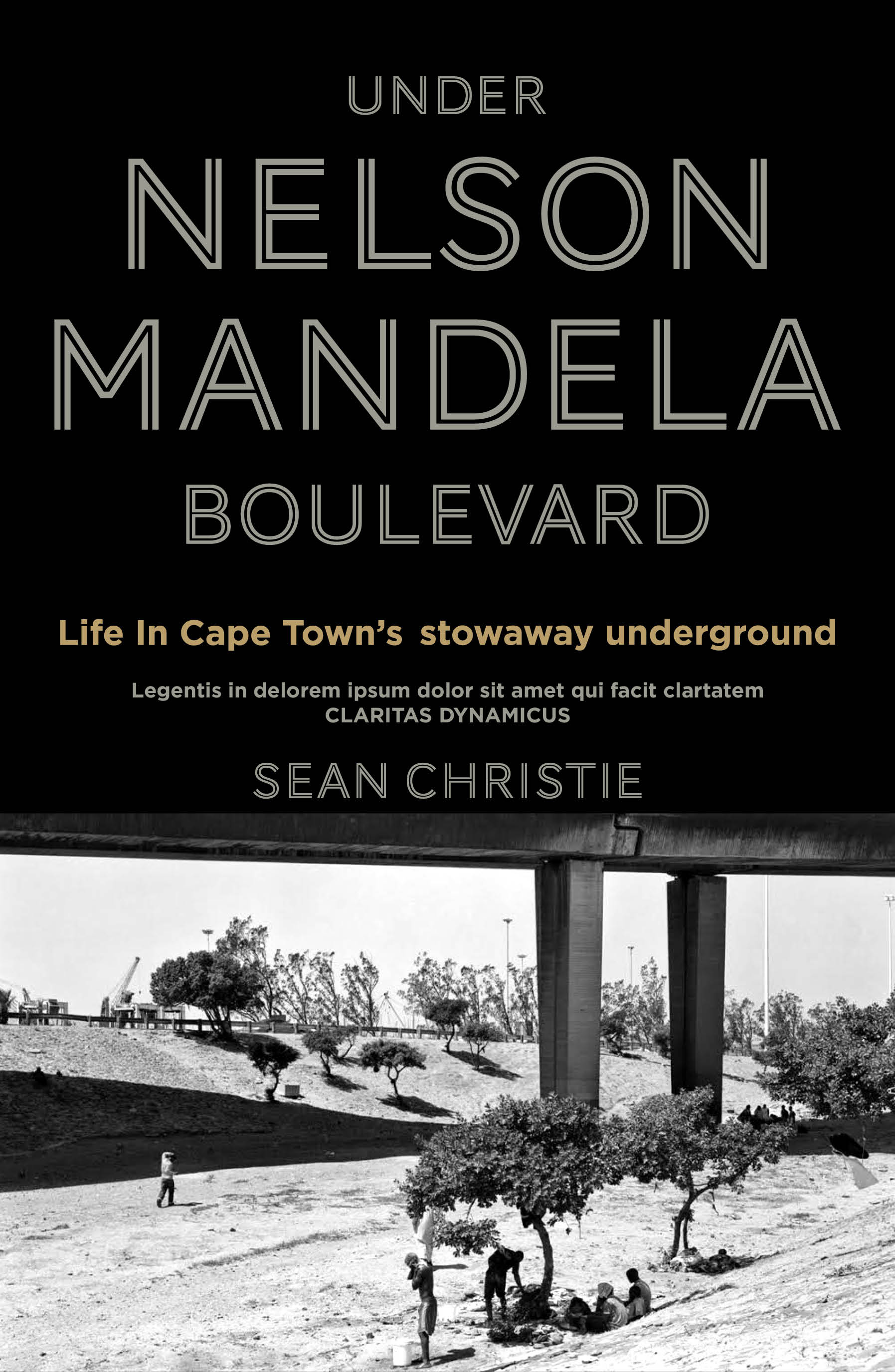 Image result for Under Nelson Mandela Boulevard: A Life Among the Stowaways by Sean Christie