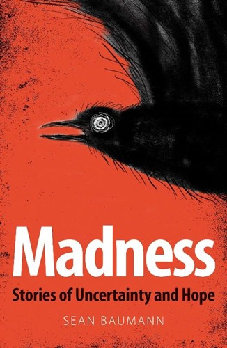 Madness by Sean Baumann